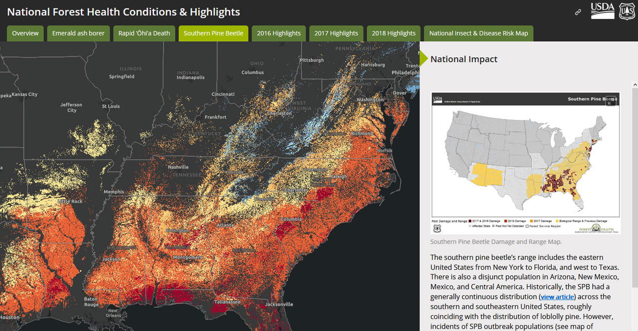 Story Map - Southern Pine Beetle